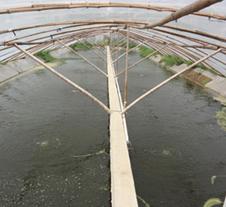 龙铁污水处理成功案例